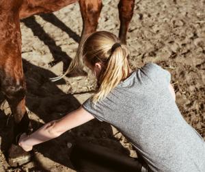 Junge Frau am Pferdehuf